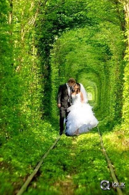 Tunnel-Of-Love-Pics