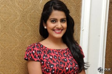 Vishaka-Singh-at-Rowdy-Fellow-Movie-Success-Meet