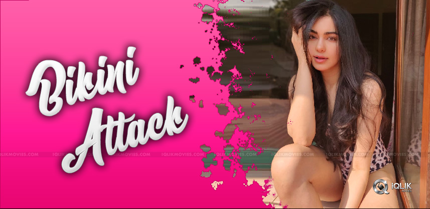 adah-sharma-gave-bikini-attack-for-viewers