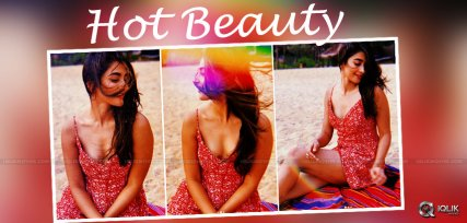 hot-and-wild-pooja-hegde-s-latest-still